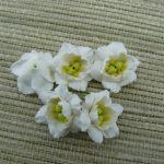 Polymer clay miniature miniature white flowers