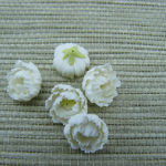 Polymer clay miniature white dahlias