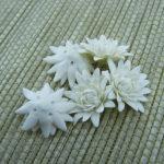 Polymer clay white poppy flower miniature